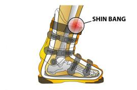 Shin-Bang-Explained