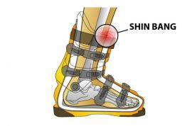 Shin-Bang-Explained