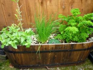 my_herb_garden